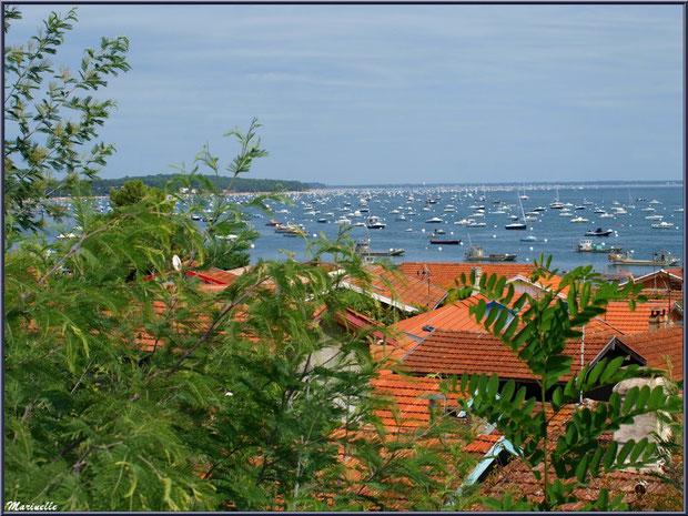 Village de L'Herbe vu des hauteurs, le Bassin d'Arcachon à perte de vue (33)