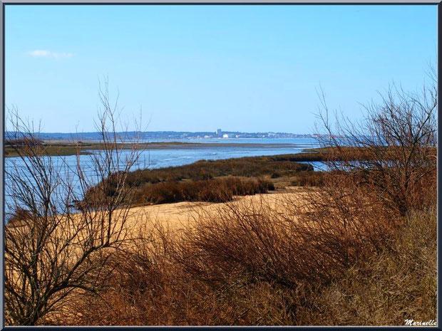 Tamaris et arbrisseaux hivernaux en bordure du sentier, la plage, le Bassin à marée basse avec en fond Arcachon, Sentier du Littoral, secteur Moulin de Cantarrane, Bassin d'Arcachon