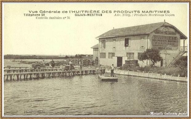 Gujan-Mestras autrefois : Huîtrerie Daycard, Bassin d'Arcachon (carte postale, collection privée)