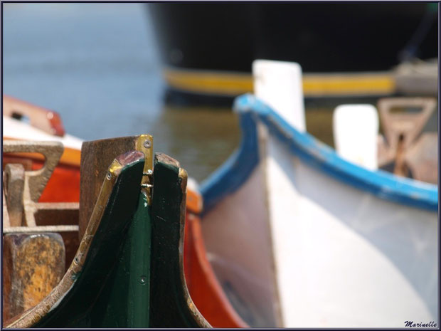 Proues de pinasses revenues de la pêche à la sardine ayant accosté - Fête du Retour de la Pêche à la Sardine 2014 à Gujan-Mestras, Bassin d'Arcachon (33)