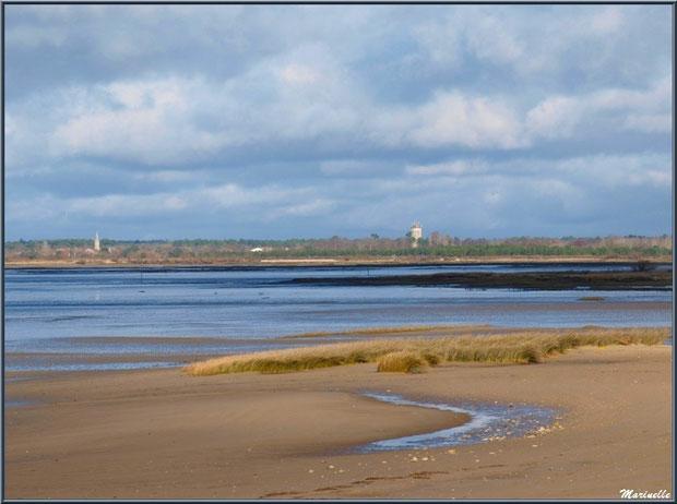 La plage, le Bassin avec, à l'horizon, le château d'eau et l'église d'Audenge, vu depuis le Sentier du Littoral, secteur Moulin de Cantarrane, Bassin d'Arcachon