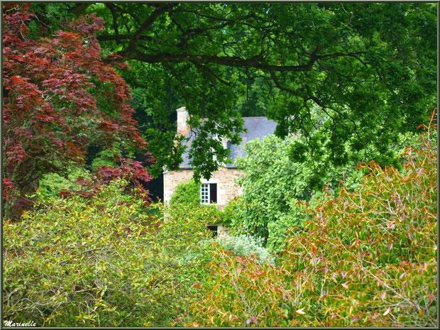 Le Manoir derrière la végatation - Les Jardins du Kerdalo à Trédarzec, Côtes d'Armor (22)