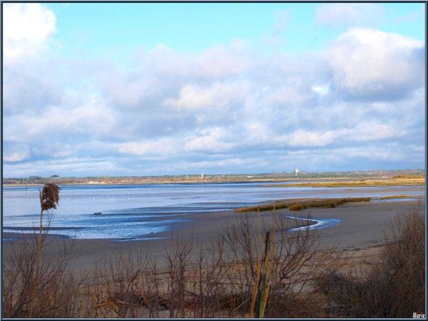 Le sentier en bordure, la plage et le Bassin à marée basse avec en fond Audenge, Sentier du Littoral secteur Moulin de Cantarrane, Bassin d'Arcachon