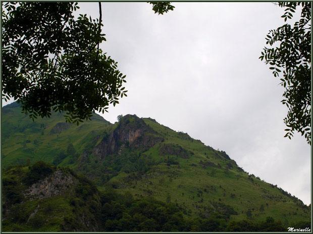 Paysage entre les arbres, à Laruns en Vallée d'Ossau (64)