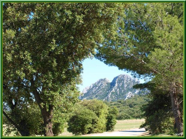 Au bout de la petite route, la piste de l'aérodrome de Romanin avec les Alpilles pour décor à Saint Rémy de Provence (13)