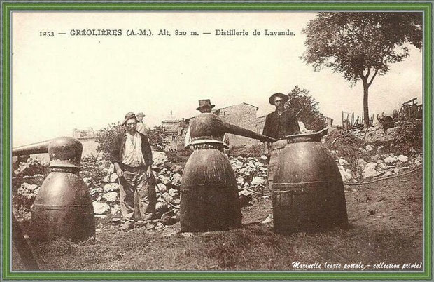Autrefois... Distillerie de lavande (carte postale - collection privée)