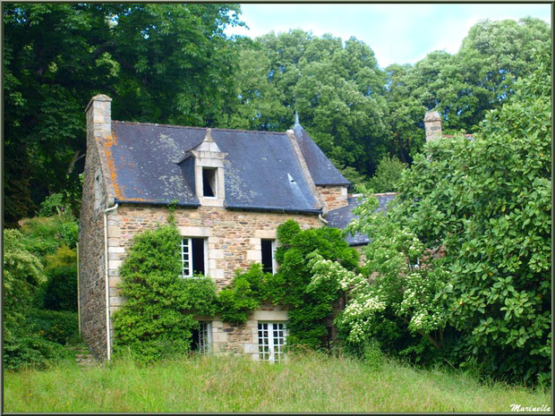 Le Mamoir - Les Jardins du Kerdalo à Trédarzec, Côtes d'Armor (22)