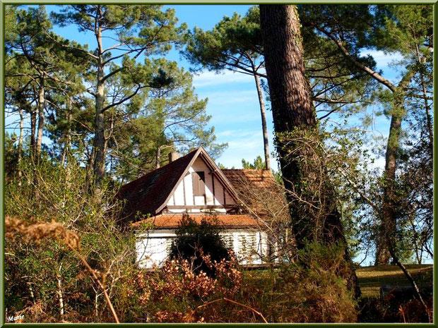 Maisonnette en bord du Lac de Cazaux (La Teste de Buch, Bassin d'Arcachon)