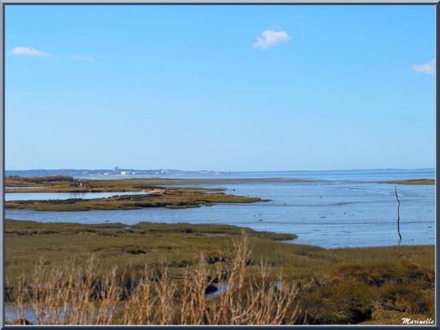 Prés salés et chenal vers le Bassin à marée basse avec en fond Arcachon, Sentier du Littoral, secteur Moulin de Cantarrane, Bassin d'Arcachon