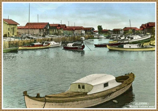 Gujan-Mestras autrefois : en 1965, pinasses dans la darse secondaire du Port de Larros, Bassin d'Arcachon (carte postale - version couleur, collection privée)