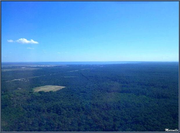 Pinède sur La Teste et le lac de Cazaux à l'horizon, Ba