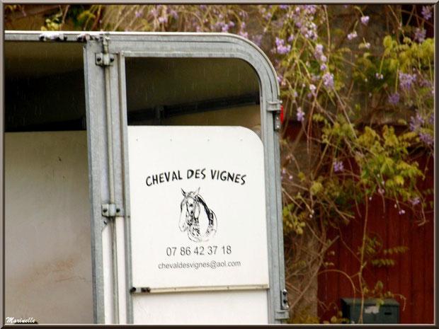 """Le van de """"Cheval des Vignes"""" en stationnement au Château Belle Assice Coureau à St Sulpice de Faleyrens (33) en avril 2012"""