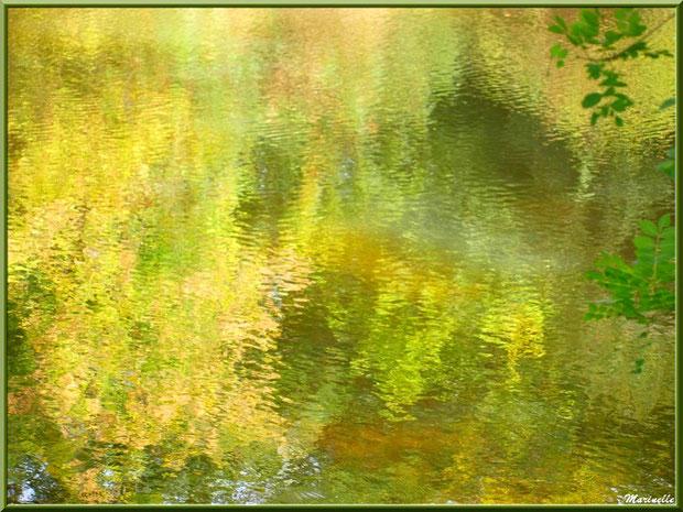 Reflets impressionnistes en bordure de La Leyre, Sentier du Littoral au lieu-dit Lamothe, Le Teich, Bassin d'Arcachon (33)