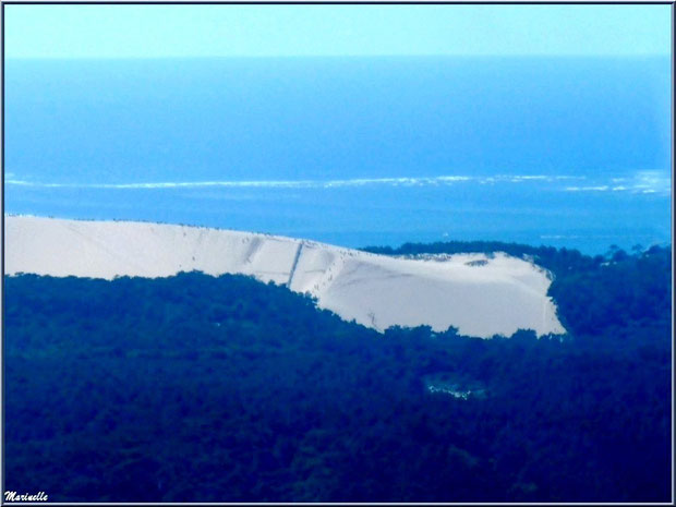 La Dune du Pyla dans son écrin de pinède, Bassin d'Arcachon (33) vu du ciel