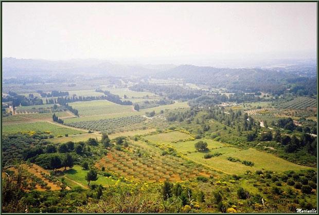 Vue panoramique sur la vallée (oliveraies, ajoncs en fleurs... et brume de chaleur en toile de fond) depuis l'esplanade du château, Château des Baux-de-Provence, Alpilles (13)