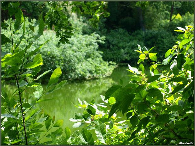 Le Grand Etang - Les Jardins du Kerdalo à Trédarzec, Côtes d'Armor (22)