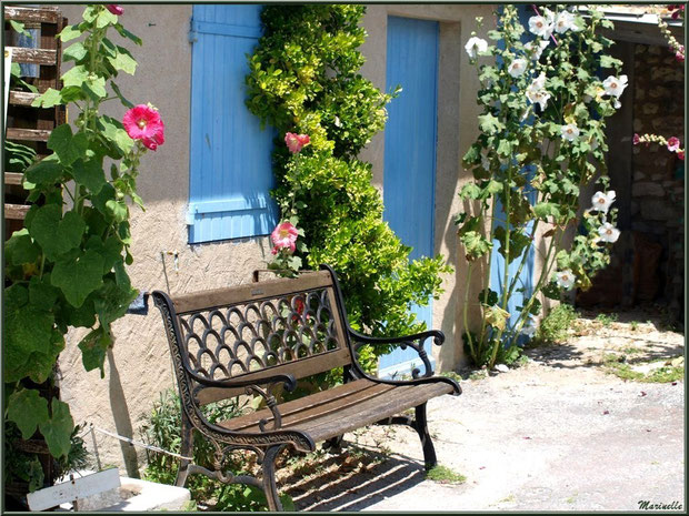 Banc pour une petite halte, au détour d'une ruelle, à Talmont-sur-Gironde, Charente-Maritime