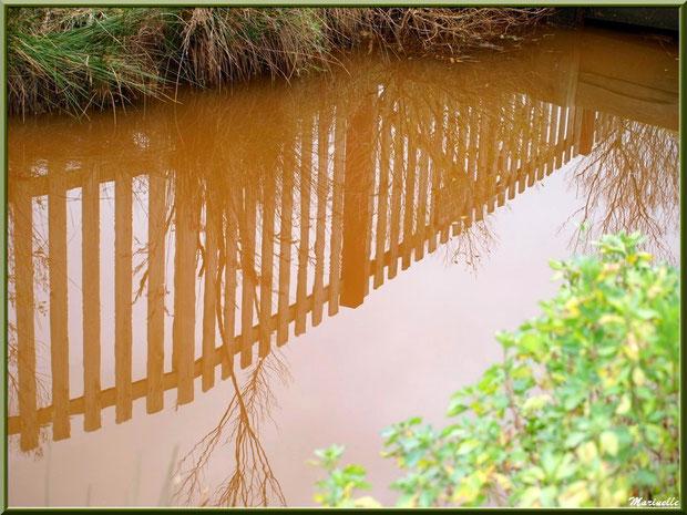 Reflets d'une barrière sur un ruisseau, Sentier du Littoral secteur Pont Neuf, Le Teich, Bassin d'Arcachon (33)