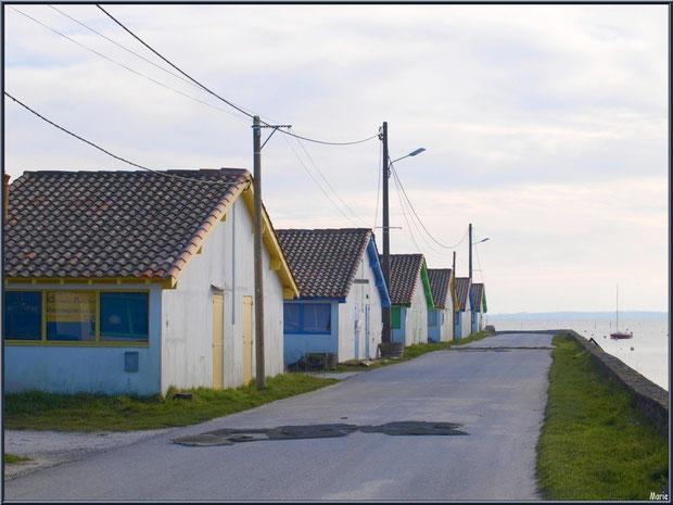 Cabanes ostréicoles alignées au port d'Arès (Bassin d'Arcachon)