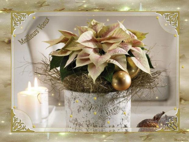 Meilleurs voeux : fleurs en décor or