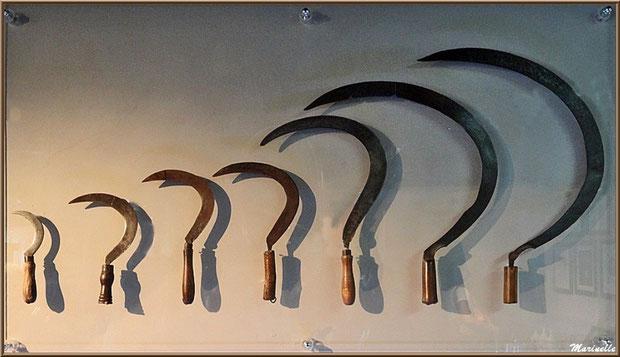 """Le """"Musée de la Lavande"""" à Coustellet (84) : anciennes serpettes pour couper la lavande"""