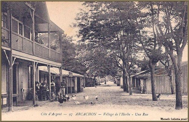 Une rue, Village de L'Herbe autrefois, Bassin d'Arcachon (33)