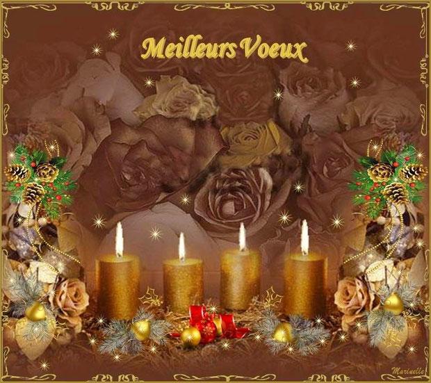 Meilleurs voeux, féérie florale or et argent
