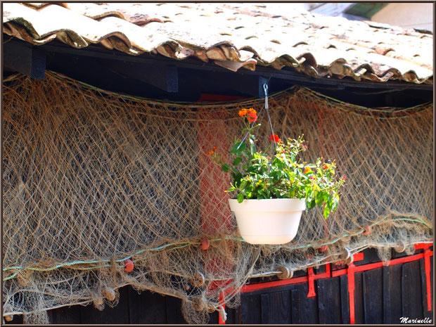Filet de pêche et pot de fleurs pendus à l'avant toit d'une maison, Village de L'Herbe, Bassin d'Arcachon (33)