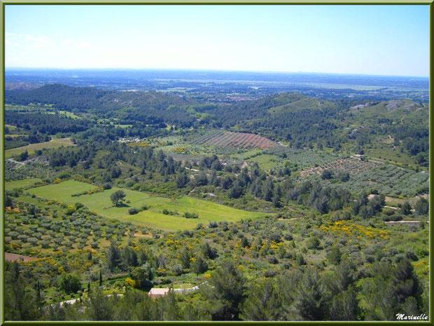 Vue panoramique sur la vallée (oliveraies, ajoncs en fleurs...) depuis l'esplanade du château, Château des Baux-de-Provence, Alpilles(13)
