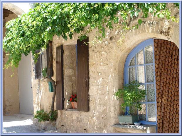 Façade maison à la treille, village de Cucuron, Lubéron (84)