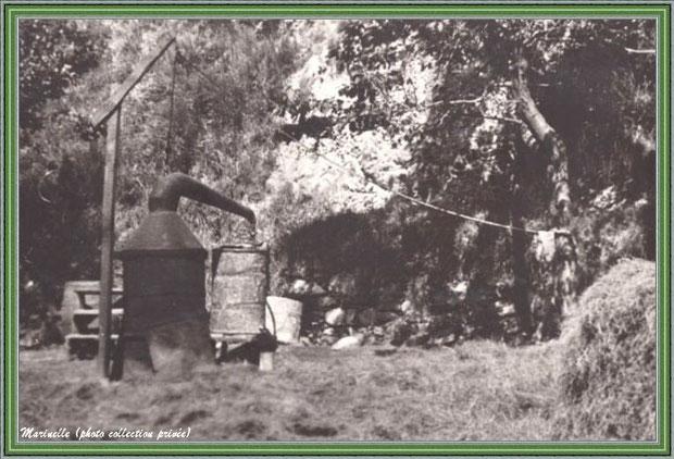 Autrefois... Alambic au coeur de la montagne (photo collection privée)