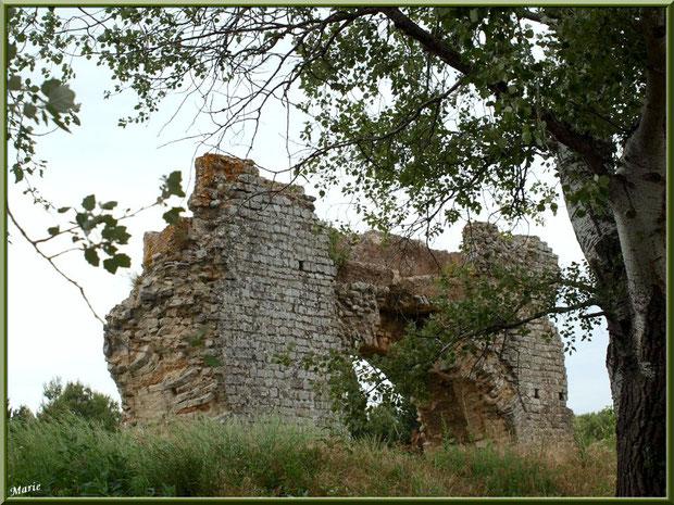 Aqueduc à Fontvielle dans les Alpilles, Bouches du Rhône