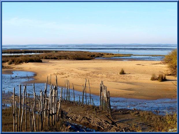 """Petit chenal, appelé """"estey"""", et bande de plage, côté Bassin sur le Sentier du Littoral, secteur Moulin de Cantarrane, Bassin d'Arcachon"""