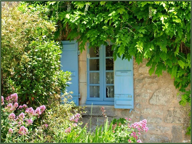 Maison aux volets bleus, valériane et glycine dans une ruelle à Talmont-sur-Gironde, Charente-Maritime
