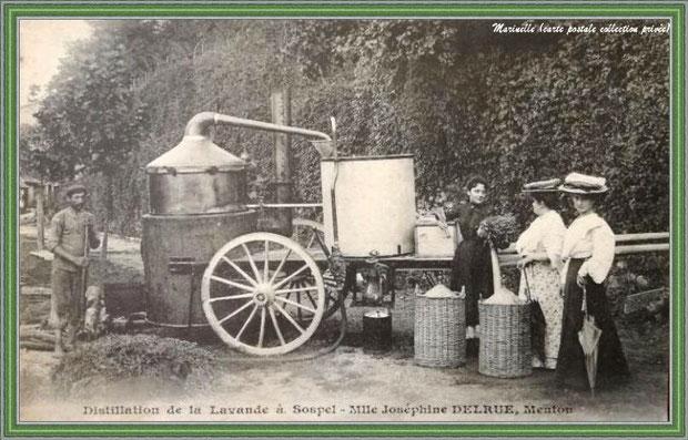 Autrefois... Distillation avec alambic ambulant vers 1907 (carte postale - collection privée)