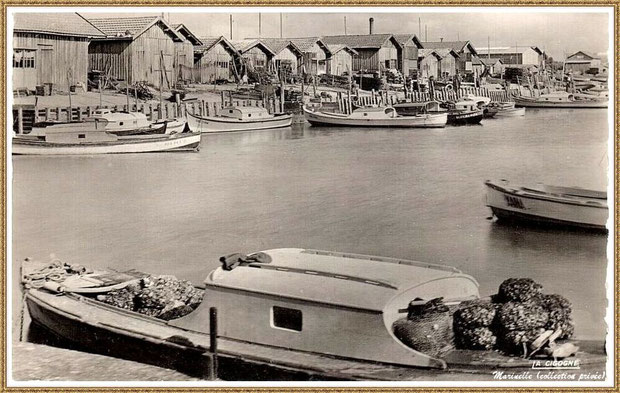 Gujan-Mestras autrefois : Pinasses dans la darse principale du Port de Larros, Bassin d'Arcachon (carte postale - version NB, collection privée)