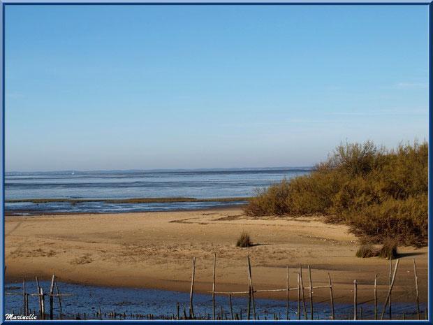 La plage hivernale avec ses tamaris et le Bassin, Sentier du Littoral, secteur Moulin de Cantarrane, Bassin d'Arcachon