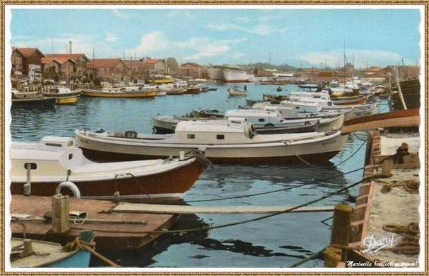 Gujan-Mestras autrefois : années 1950, pinasses, chalands... dans la darse principale du Port de Larros, Bassin d'Arcachon (carte postale, collection privée)