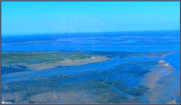 L'Ile aux Oiseaux (une partie) et ses deux cabanes tchanquées, Bassin d'Arcachon (33) vu du ciel