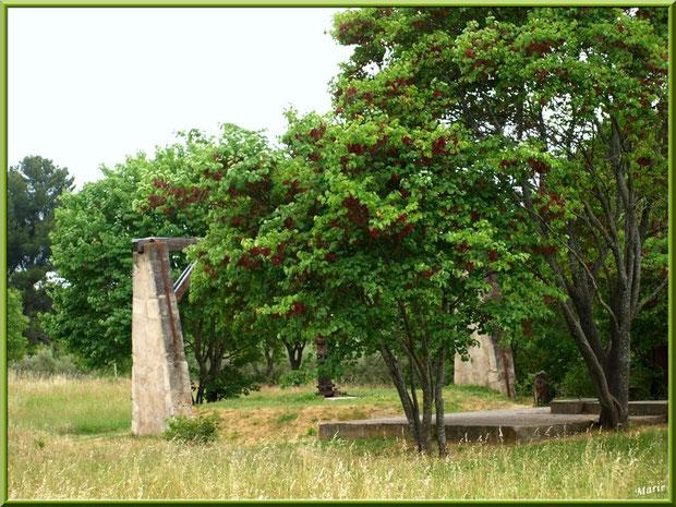 Outillage ancienne carrière de pierre face aux Antiques et monastère Saint Paul de Mausole à Saint Rémy de Provence, Alpilles (13)