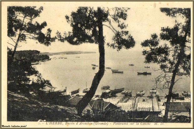 Le village vu des hauteurs, Village de L'Herbe autrefois, Bassin d'Arcachon (33)