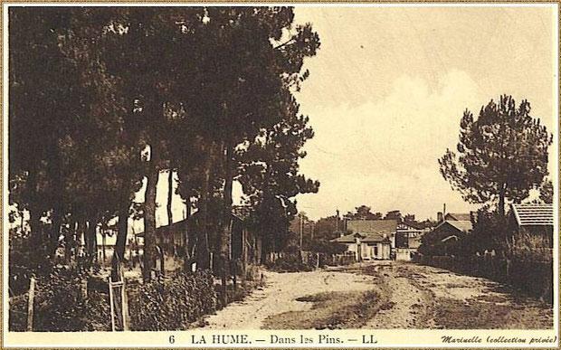 Gujan-Mestras autrefois : Rte de la Plage à La Hume, (actuelle Av de la Plage) avec, en fond, les maisons bordant la Route Départementale ou Route Nationale (actuelle Av du Mal de Lattre de Tassingny), Bassin d'Arcachon (carte postale, collection privée)