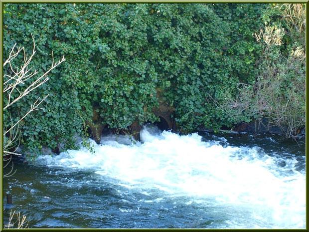 Coulée d'eau en sortie d'une écluse sur le Canal des Landes au Parc de la Chêneraie à Gujan-Mestras (Bassin d'Arcachon)