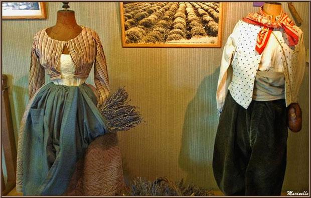 """Le """"Musée de la Lavande"""" à Coustellet (84) : anciens vêtements de coupeurs de lavande"""