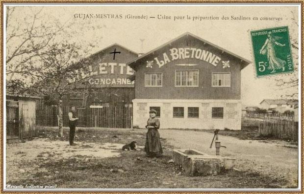 """Usine conserverie de sardine Billette """"La Bretonne"""" sur le port du Canal à Gujan-Mestras, Bassin d'Arcachon (33)"""