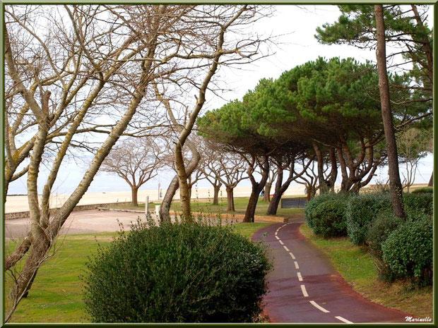 La promenade en front de mer de la plage Péreire à Arcachon, Bassin d'Arcachon (33)