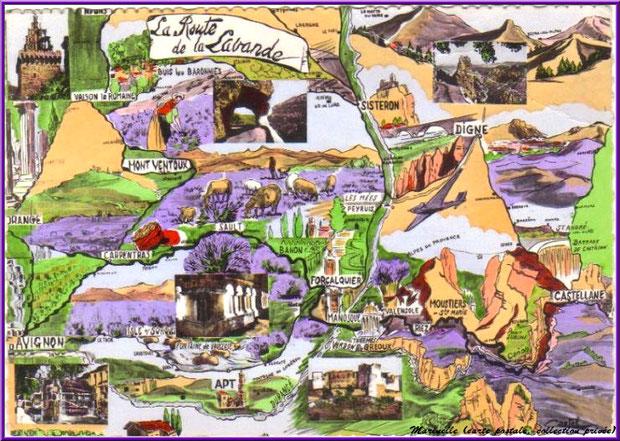La Route de la Lavande (carte postale ancienne, collection privée)