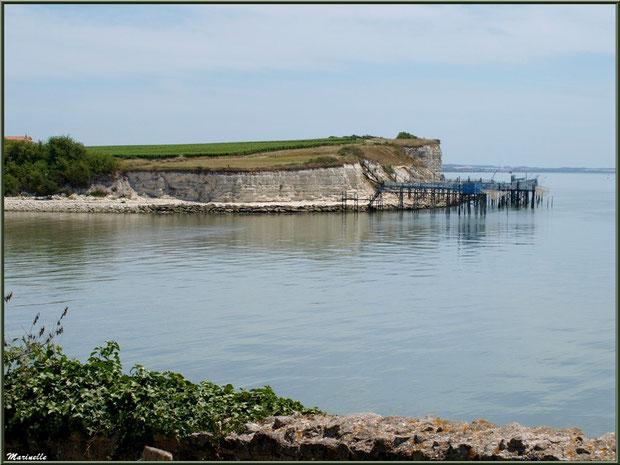 Les falaises du Caillaud et ses carrelets à ponton depuis Talmont-sur-Gironde, Charente-Maritime