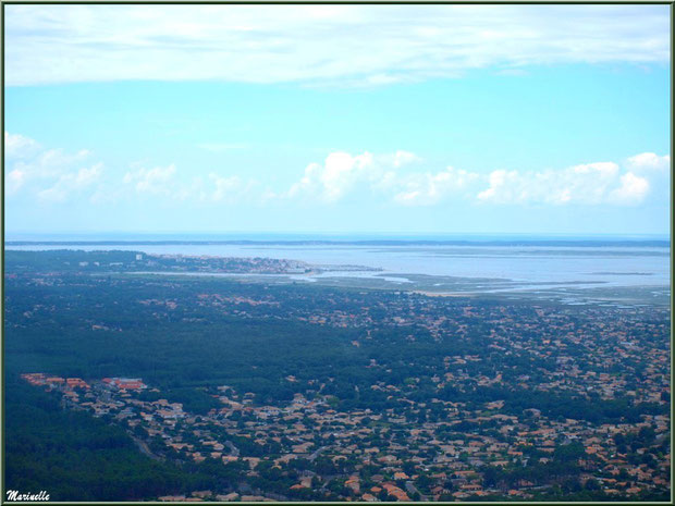 Gujan Mestras, La Teste, Arcachon et le Bassin, Bassin d'Arcachon vu du ciel (33)