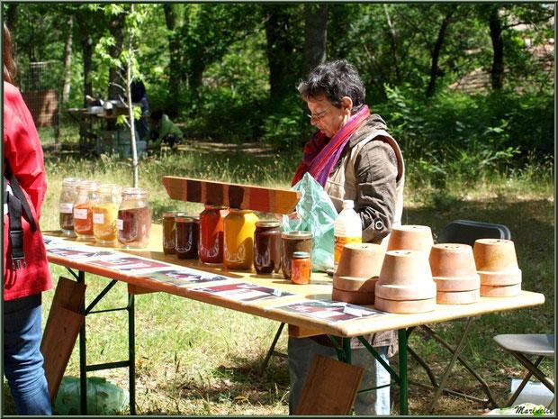 Atelier de peinture aux ocres et  farine sur bois à la Fête de la Nature 2013 au Parc de la Chêneraie à Gujan-Mestras (Bassin d'Arcachon)
